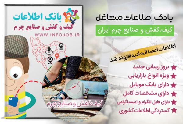 کیف و کفش،صندل ایران